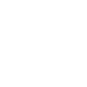 Momo-π